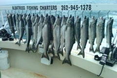 Here is the catch of the year so far 6-13-10! Huge Chinook King Salmon and a Limit catch all in one trip! Wow.. Call now for your Adventure of a Life time! Albatross Fishing Charters 262-945-1378